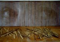 6_echo-hiding-in-the-forest--2011-hand-cut-plywood-90x240cm-web-copy_v2.jpg